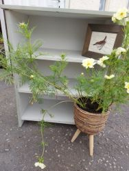 Lovely neat bookcase or use it for shoes or towels maybe....£40