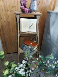 Have a pair of vintage stripped display ladders...very nice  £30 each